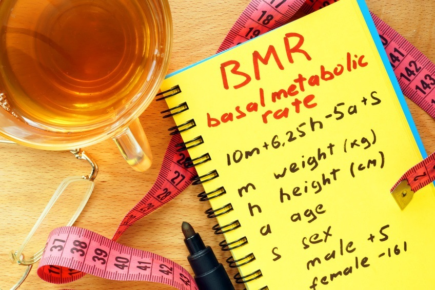 BMR basal metabolic rate formula in a notepad.